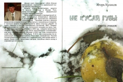 """""""Не кусай губы"""". Книга стихов/ И.В.Куликов"""
