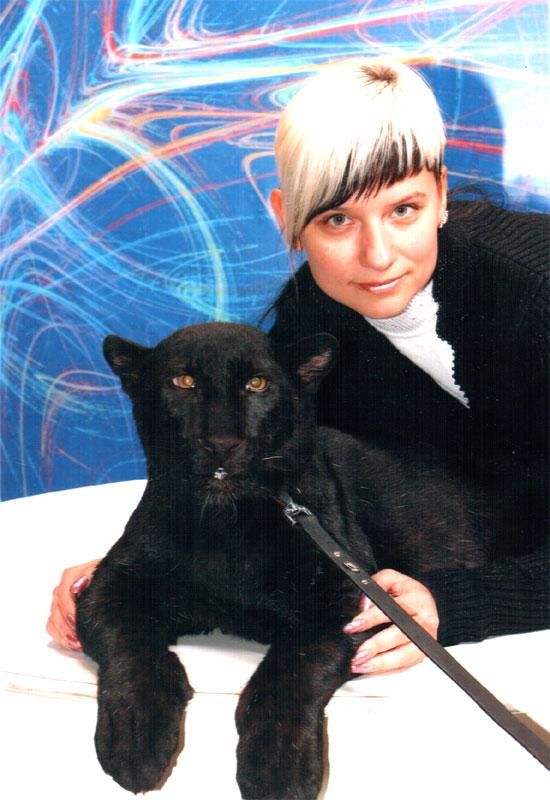 Кошки. Московский цирк на проспекте Вернадского, 2008г.